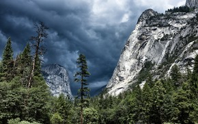 Picture forest, the sky, clouds, trees, mountains, clouds, nature, rocks, USA, Yosemite