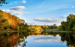 Picture Autumn, Lake, Forest