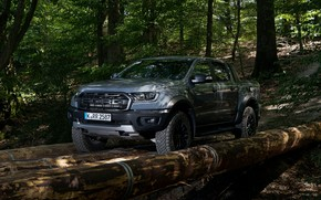 Picture forest, grey, Ford, Raptor, pickup, logs, Ranger, 2019