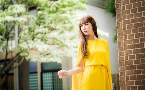 Picture girl, dress, Asian, cutie, bokeh