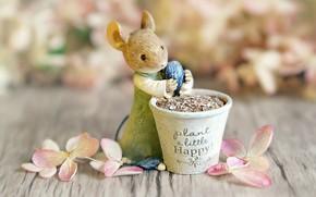 Picture flowers, background, the inscription, toy, Board, petals, mouse, mouse, pot, rat, floral, figure, bokeh, souvenir, …