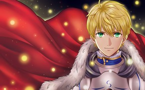 Picture guy, cloak, Saber, the saber, Fate Prototype
