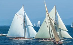 Picture sea, France, yacht, sail, regatta, sailing, Voiles de Saint-Tropez