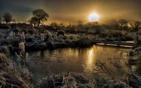 Picture dawn, England, frosty morning, Coddington
