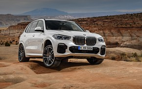 Picture 2018, Sport, crossover, BMW X5 M, XDrive30d