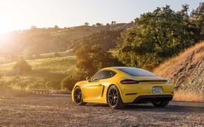 Picture Porsche, Cayman, rear view, GTS, 718, 2019