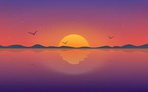 Picture sunset, birds, vector, horizon