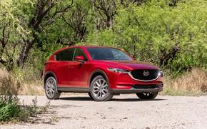 Picture photo, Red, Mazda, Car, Signature, CX-5, 2019