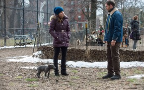 Picture autumn, girl, dog, male, Tom Hardy, Tom Hardy, The Drop