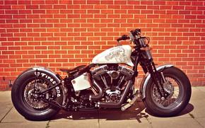 Picture Harley-Davidson, Custom, Motorbike, Bobber