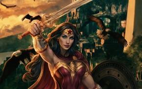 Picture look, birds, sword, hero, costume, Wonder Woman, Wonder woman