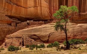 Picture mountains, rocks, AZ, USA, ruins, Canyon de Shay, White House Ruins