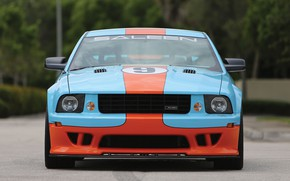 Picture Mustang, Ford, Saleen, front view, Coupe, 2007, Extreme, S281