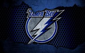 Picture wallpaper, sport, logo, NHL, hockey, Tampa Bay Lightning