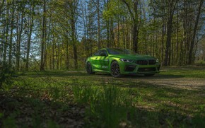 Picture grass, coupe, BMW, Coupe, 2020, BMW M8, two-door, M8, M8 Competition Coupe, M8 Coupe, F92