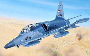 Picture training and combat aircraft, light multipurpose attack plane, The Iraqi air force, Aero L-159 ALCA