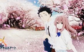 Picture Park, spring, Sakura, two, You no Katachi, Form voice