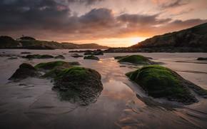 Picture sand, sea, beach, the sky, the sun, clouds, rays, light, algae, sunset, clouds, rocks, shore, …