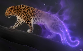 Picture fantasy, art, big cat, Alexander Khitrov, GaudiBuendia, night star, leopard
