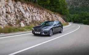 Picture vegetation, Jaguar, slope, universal, on the road, Jaguar XF, 2020, XF, XF Sportbrake