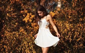 Picture girl, the sun, trees, branches, pose, portrait, makeup, garden, dress, hairstyle, brown hair, is, beautiful, …