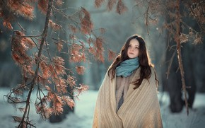 Picture winter, girl, spruce forest, shawl