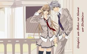 Picture fence, tie, school uniform, long hair, art, students, Tsukumo Murasame, May Murasame, hotaru odagiri, ura …