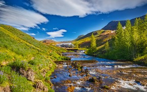 Picture trees, mountains, river, Iceland, Yuri Levko