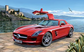 Picture Mercedes-Benz, Sea, Germany, Seagull, SLS AMG