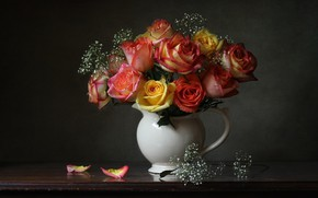 Picture background, roses, bouquet, petals, pitcher, gypsophila