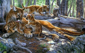 Picture nature, pose, figure, picture, art, kittens, painting, Puma, cubs, mother, Cougar, Al Agnew, Cougars