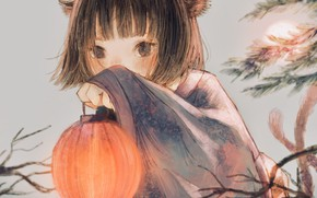 Picture girl, lantern, ears