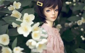 Picture doll, barrette, Jasmine