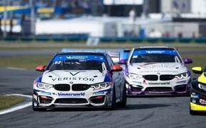 Picture asphalt, coupe, track, BMW, M4 GT4
