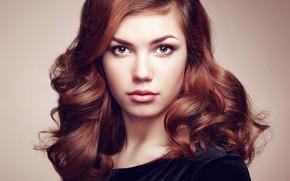 Picture look, close-up, background, model, portrait, makeup, hairstyle, brown hair, beautiful, Oleg Gekman