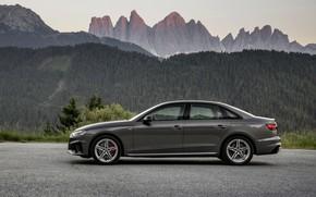 Picture Audi, sedan, in profile, Audi A4, 2019