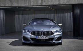 Picture BMW, front view, Gran Coupe, 8-Series, 2019, M850i, XDrive, G16