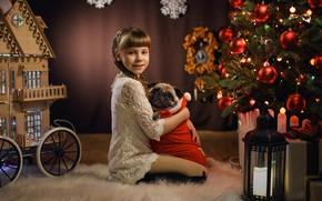 Picture mood, dog, Christmas, girl, lantern, pug, New year, house, tree, friends, hugs, George Bondarenko