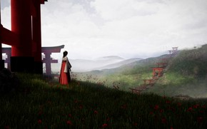Picture girl, flowers, hill, torii