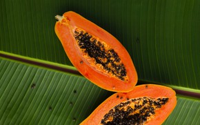 Picture leaves, fruit, papaya