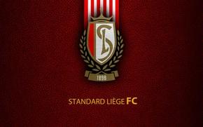 Picture wallpaper, sport, logo, football, Belgian Jupiler PRO-League, Standard Liege