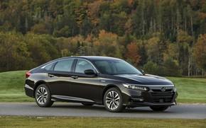 Picture lawn, Honda, Accord, sedan, Hybrid, hybrid, 2018, Touring, four-door