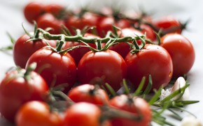 Picture drops, food, blur, white background, vegetables, tomatoes, a lot, on the branch, tomatoes, tomatoes