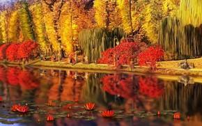 Picture landscape, nature, Park, stay, art, walk, Nina Vels, Feofania Park autumn in old Kiev