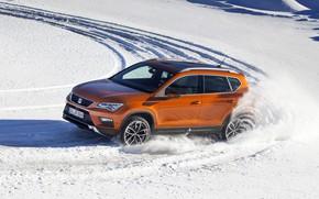 Picture snow, movement, SUV, Seat, 2017, 4Drive, Ateca