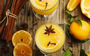 Picture orange, cinnamon, lemonade, Anis