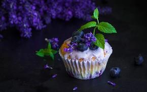 Picture flowers, berries, blueberries, mint, cupcake, cupcake