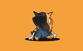 Picture bone, Pokemon, Pokemon