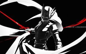Picture girl, sword, mask, art, helmet, armor