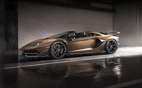 Picture machine, light, lights, Lamborghini, sports car, drives, boxes, roadster, Aventador, SVJ